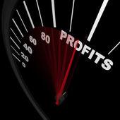 スピード メーター - 上昇利益のビジネスの成功 — ストック写真
