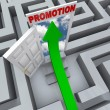 Promotion in Maze - Open Door to Career Success - Foto de Stock