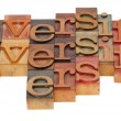 Stock Photo: Diversify word abstract