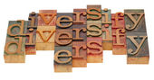 Diversify word abstract — Stock Photo