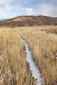 Sentiero di bestiame in una valle di montagna — Foto Stock
