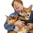 Senior lady with her Corgi puppies — Stock Photo #4369086