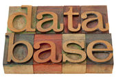 Database word in letterpress type — Stock Photo