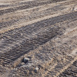 Stock Photo: Bulldozer tracks