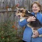 Old woman with corgi puppy — Stock Photo #4547102