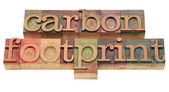 Carbon footrpint - word sin letterpress type — Stock Photo