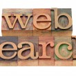 Web search - words in wood letterpress type — Stock Photo