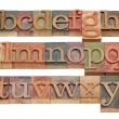 English alphabet in wood letterpress type — Stock Photo