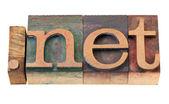 Domínio de internet de rede em madeira fontes — Fotografia Stock