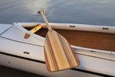 Canoe paddle — Stock Photo