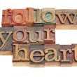 Follow your heart — Stock Photo