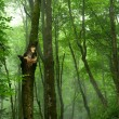 Green forrest — Stock Photo