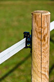 Electrified Fence For Livestock — Stockfoto