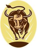 Raging texas longhorn bull charging — Stock Photo