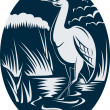 Stock Photo: Heron wading in marsh or swamp