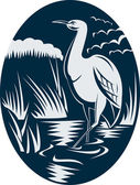 Heron wading in the marsh or swamp — Stock Photo