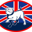 Proud English bulldog marching with British flag — Stock Photo #4222314