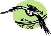 漆黒の支店で飛んでいる鳥 — ストック写真