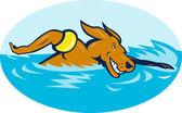 Kreslený pes plavání — Stock fotografie