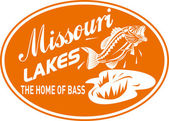 Largemouth bass missouri lakes — Stock Photo