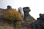 Rock columns and bush in fog, Crimea mountains, Demerdgi. — Stock Photo