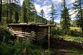 Wood shack (winter hut) in wild forest, Mountains — Stock Photo