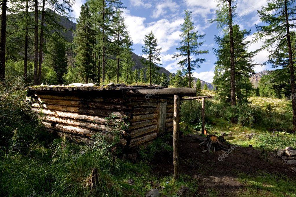 Cabane bois (cabane dhiver) dans la forêt sauvage, montagnes ...