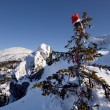 Royalty-Free Stock Photo: Christmas fir tree with red cap in mountains.Snow.