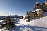 Winter in taiga. Trees and rocks in snow. South Ural mountains. — Stock Photo