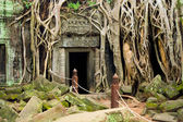 Ta Prohm Temple in Cambodia — Fotografia Stock