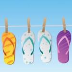 Flip Flops — Stock Vector #4562543