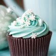 Christmas cupcake — Stock Photo #4177373