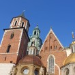 Cathedral at Wawel hill in Cracow. Poland — Stock Photo