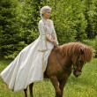Royalty-Free Stock Photo: Medieval horseback riding