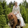 Medieval horseback riding - Photo