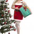 Royalty-Free Stock Photo: Santas girl