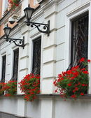 Facade with red flowers — Stock Photo