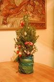 在厨房里的圣诞树 — 图库照片