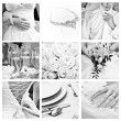 Wedding collection — Stock Photo