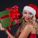 Santa — Stock Photo #4222454