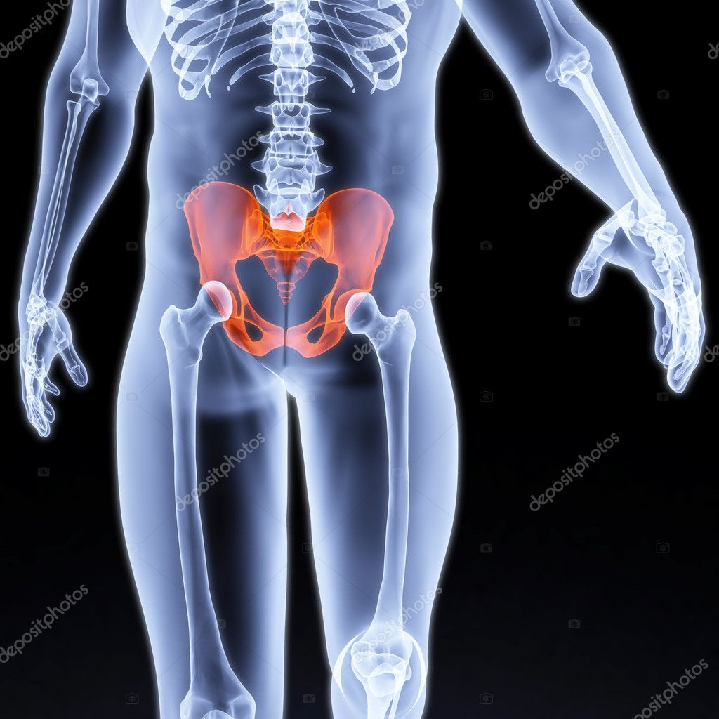 Male pelvis under the X-rays. pelvis is highlighted in red. — Stock Photo #4067996
