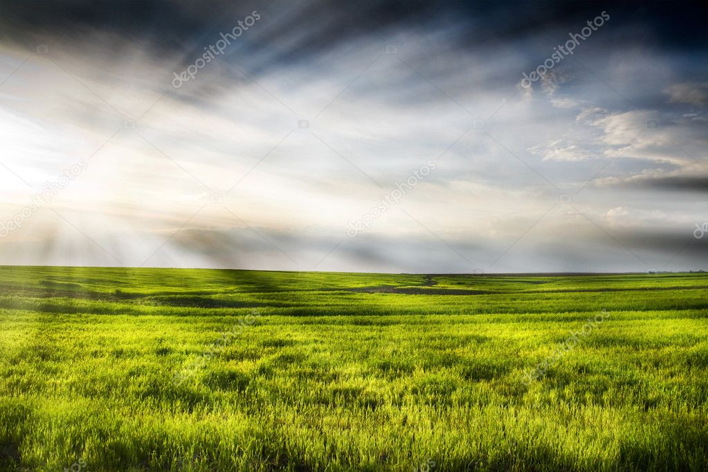 Dramatic landscape of wheat field with blue sky and bright sun — Stock Photo #4624371