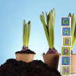 Gardening concept — Stock Photo #5058126