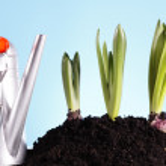 Gardening concept — Stock Photo #5059268