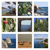 Collage - the Spanish sea and beaches — Stock Photo
