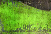 Green grunge background — 图库照片