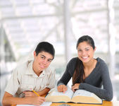 Two Students Studying Together — Foto Stock
