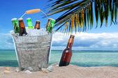 Butelki różne piwa w wiadro lodu w piasku — Zdjęcie stockowe