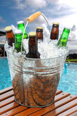 Beer Bucket on Poolside Teak Table — Stock Photo