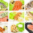 Fish set — Stock Photo #4146168